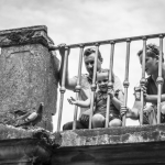 fotografia-dziecieca-bialystok-packshotstudio-piotr-cierebiej-24